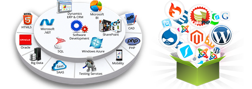 Software Development Agency, Website Development Company